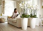 Где и как используется искусственные цветы, растения и декор