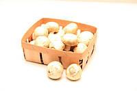 Тара для грибов