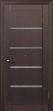 Двери МЮНХЕН L-1 Полотно+коробка+1 к-кт наличников, фото 2