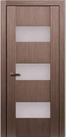 Двери МЮНХЕН L-24 Полотно+коробка+1 к-кт наличников, шпон , фото 2
