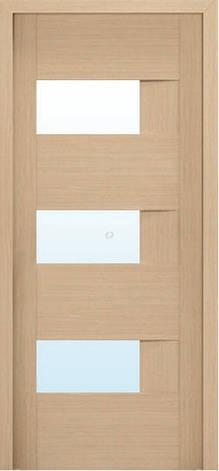 Двери МЮНХЕН L-19.S Полотно+коробка+2 к-та наличников+добор 90мм, шпон, фото 2