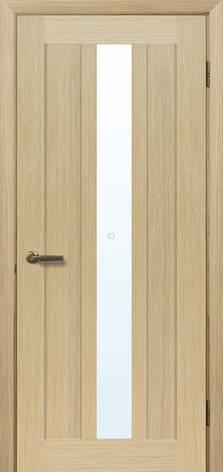 Двері МЮНХЕН T-13 Полотно+коробка+2 до-та лиштв+добір 90мм, шпон, фото 2