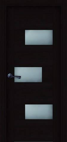 Двери ПОЛО Полотно, шпон, срощенный брус сосны, фото 2