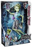 Кукла Monster High Портер Гейсс - Haunted Student Spirits Porter Geiss, фото 6