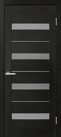 Двері Оміс Мілано. Полотно+коробка+2 до-та лиштв+добір 100 мм, ПВХ, скло сатин з молдингом, фото 2