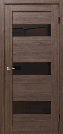 Двері Alegra AG-10 Полотно+коробка+1 до-кт наличника, фото 2