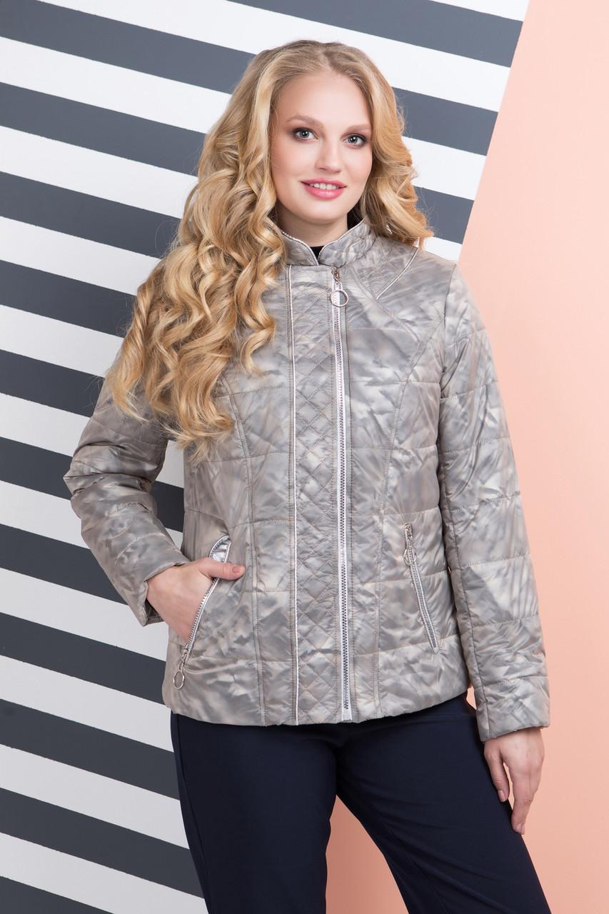 5dbf8521102 Модная куртка женская демисезонная Сингапур в размерах 48-58 ...