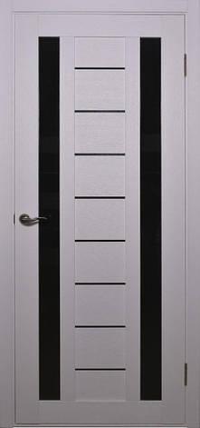 Двери Alegra AG-4 Полотно, фото 2