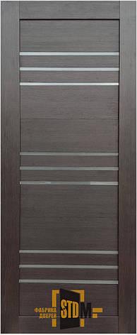 Двері Alegra AG-8 Полотно+коробка+1 до-кт наличника, фото 2