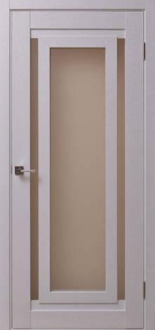 Двери CONSTANTA CS-2 Полотно+коробка+2 к-кта наличников+добор 100 мм, фото 2
