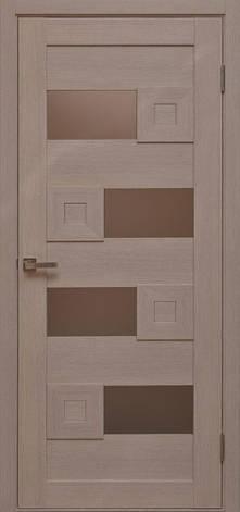 Двері CONSTANTA CS-5 Полотно+коробка+1 до-кт наличника, фото 2