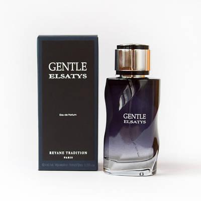 Мужские духи REYANE TRADITION Gentle Elsatys 100ml парфюмированная вода свежий пряный глубокий аромат ОРИГИНАЛ