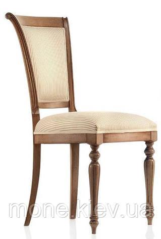 "Итальянский стул  ""Cecilia"", фото 2"