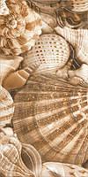 Декор для стены GoldenTile Sea Breeze Shells 300x600 бежевый