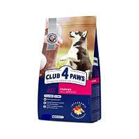 «Клуб 4 лапы» Premium сухой корм премиум класса для щенков всех пород 20 кг
