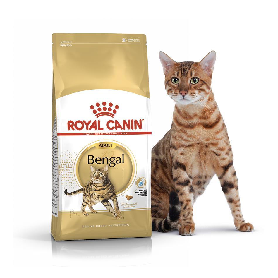 Royal Canin Bengal Adult 1кг (на вес) - корм для  взрослых кошек бенгальской породы
