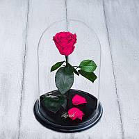 Роза в колбе standard малиновая 830011