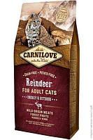 Carnilove Reindeer 6кг - корм  для активных кошек с мясом северного оленя