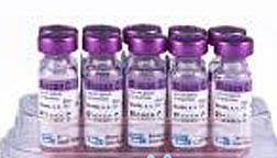биокан коронавирус