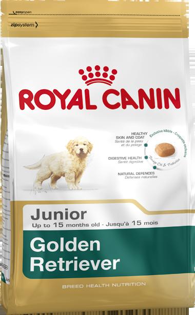 Royal Canin Golden Retriver Junior 3кг- корм для щенков голден ретривера до 15 месяцев