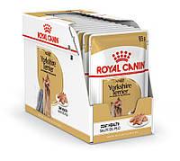 Royal Canin Yorkshire Terrier (паштет) 85г*12шт-консервированный корм для взрослых собак, фото 1