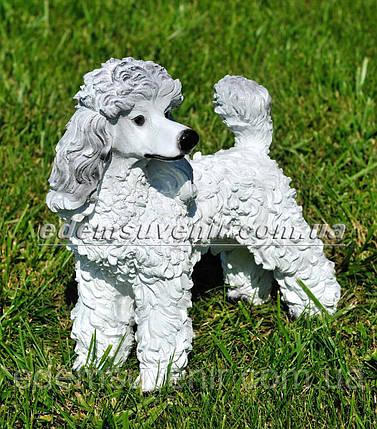 Садовая фигура Пудель, фото 2