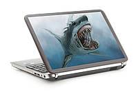 Наклейка на ноутбук. Акула