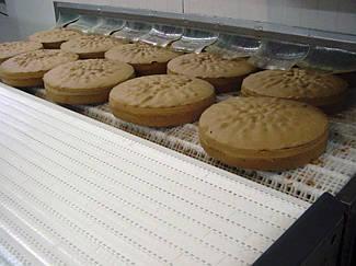 Модульна стрічка Habasit для транспортування хлібобулочних виробів