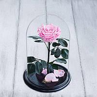Роза в колбе Lux розовая 830023