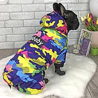 Зимний комбинезон для собак «DogBaby» Pink camouflage