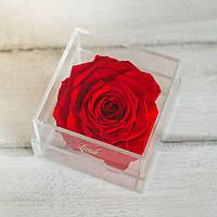Бутон розы в коробке lux красный 830063