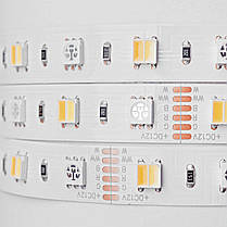 Светодиодная лента Mi-Light SMD5050 RGB+WW+CW (RGB+CCT) LED Strip IP20, фото 2