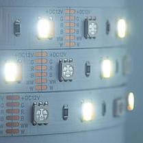 Светодиодная лента Mi-Light SMD5050 RGB+WW+CW (RGB+CCT) LED Strip IP20, фото 3