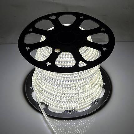 Светодиодная лента Venom SMD 2835 120д.м. (IP67) 220V (VP-2835220120-W), фото 2