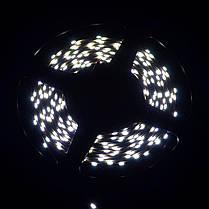 Светодиодная лента Venom SMD 335 60д.м. (IP33) Standart (боковое свечение), фото 3