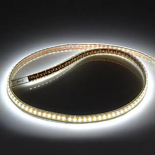 Светодиодная лента Venom SMD 5730 72д.м. (IP67) 220V, фото 2