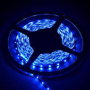 Светодиодная лента Venom SMD 3528 60д.м. негерметичная (IP33) Premium (P-3528120600-B), фото 2