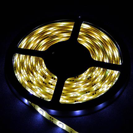 Светодиодная лента Venom SMD 5050 30д.м. герметичная Premium, фото 2