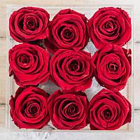 9 бутонов розы в коробке standard красные 830067