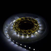 Светодиодная лента Venom SMD 2835 60д.м. nano (IP67) Premium, фото 2
