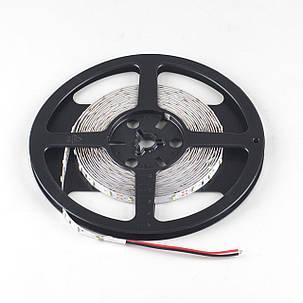 Светодиодная лента Venom SMD 3528 60д.м. негерметичная (IP33) Premium (VP-3528120600-W), фото 2