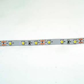 Светодиодная лента Venom SMD 2835 60д.м. негерметичная (IP33) Premium 22Lm (VP-2835120600-1-W), фото 2