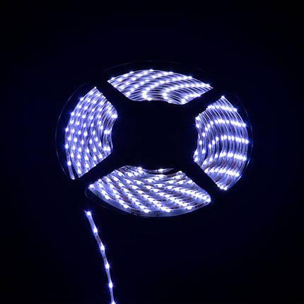 Светодиодная лента Venom SMD 335 60д.м. герметичная (IP33) Premium (боковое свечение) (VP-335120601-W), фото 2
