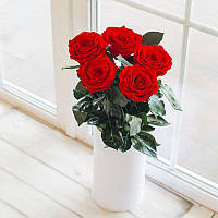 Букет из 5 роз premium красный 830069