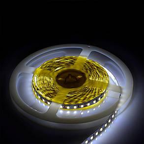 Светодиодная лента Venom SMD 2835 120д.м. nano (IP67) Premium (VP-2835121201-W), фото 2