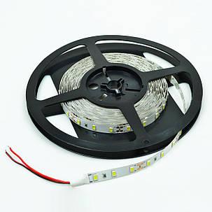 Светодиодная лента Venom SMD 5630 60д.м. негерметичная (IP33) Premium (VP-5630120600-W), фото 2
