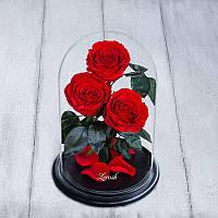 3 розы в колбе premium красные 830071