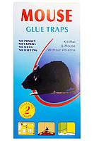 Клеевая ловушка от крыс и мышей голубая маленькая, упаковка 2 шт.