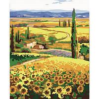 Картина по номерам Подсолнухи в поле 40*50 см, 3 уровень сложности