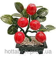 Яблоня (5 плодов)